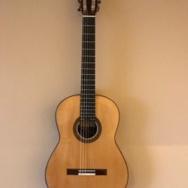Dominique FIELD 2010 front modern masters guitar